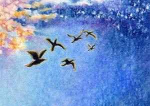 Kristen Scholfield-Sweet on illustrating a children's book